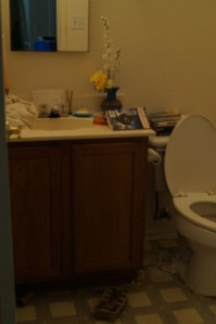 picture of Guest Bath